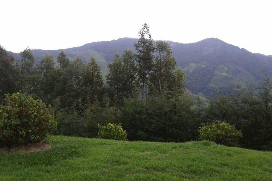 Foto 2 - Imóvel 7385:  em São Bento do Sapucaí para  (Região Luminosa)
